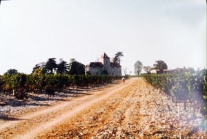 Haute Serre chateau and vineyard