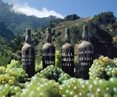 Reg's wine blog photo madeira wines and grapes